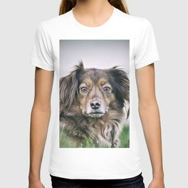 Lion dog T-shirt