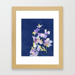 Floral Cyano Type Framed Art Print