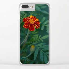 Flowers Tagetes Clear iPhone Case