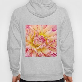 Pink Dahlia with Bright Pink tips Close Up Detail Hoody