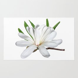 The Flower is the Star (Magnolia) Rug