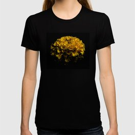 Beautiful Yellow Flower T-shirt