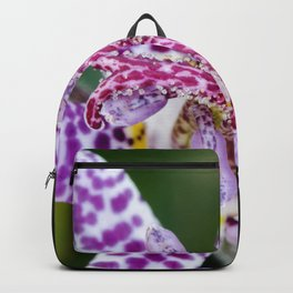 Toad Lily Center Perspective Backpack