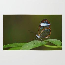 Glasswing Butterfly Rug