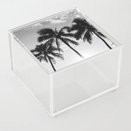 Hawaiian Palms II Acrylic Box