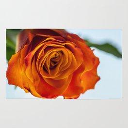 Firery Orange Rose Bloom Rug