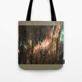 New and Ancient Tote Bag