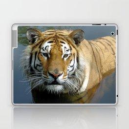 Sibirien Tiger Laptop & iPad Skin