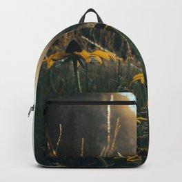 Daisy Meadow in Yosemite Backpack
