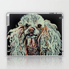 Toy Poodle portrait Laptop & iPad Skin