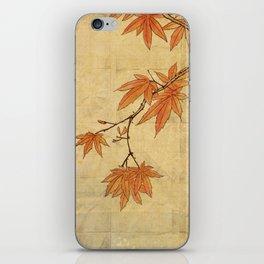 Asiafoldantique iPhone Skin