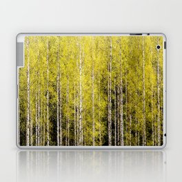 Lovely spring atmosphere - vibrant green leaves on the trees - beautiful birch grove Laptop & iPad Skin