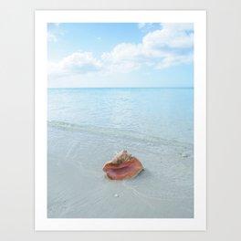 Conch at the Beach Art Print
