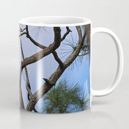 Harriet of Fort Myers Coffee Mug
