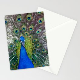 Mr. Peacock Stationery Cards