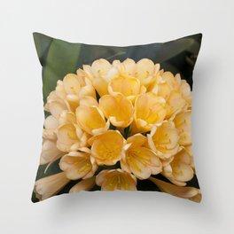 Clivia Apricot Throw Pillow