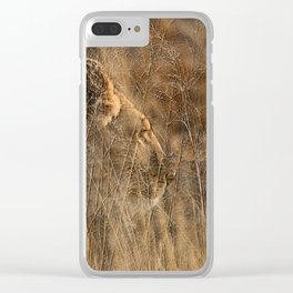 Lioness on Alert Clear iPhone Case