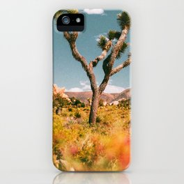 Joshua Tree III / California Desert iPhone Case