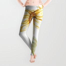 Sunflower 01 Leggings