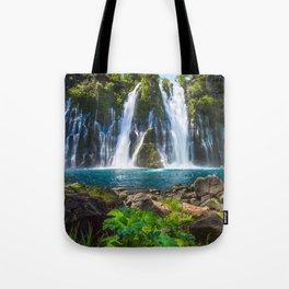 Burney Falls Delight Tote Bag