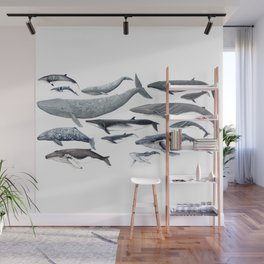 Whale diversity Wall Mural