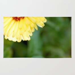 flowering plant photography no.1 Rug