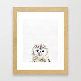 Owl, Baby, Animal, ZOO, Nursery, Minimal, Modern, Wall art Art Print Framed Art Print