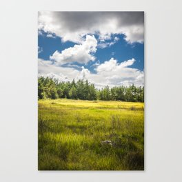 Saaremaa 1.1 Canvas Print