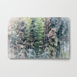 Temple Bamboo Metal Print