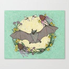 big brown bat. Canvas Print
