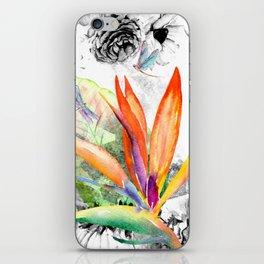 Bird of paradise iPhone Skin