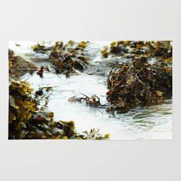 Down By The Sea Rug
