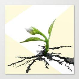 perseverance. Canvas Print