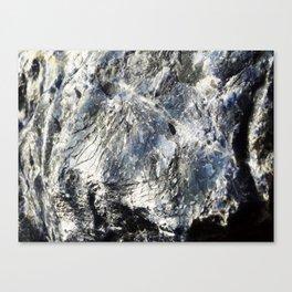 Super Sodalite! Canvas Print