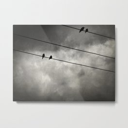The Trace 11.25 Metal Print