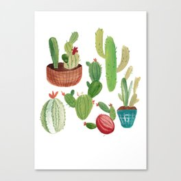 A Family Of Cacti Canvas Print