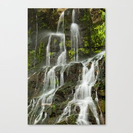 Ho Opi'i Waterfall  Canvas Print