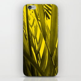 tropical palmleaves texture  in the summer iPhone Skin