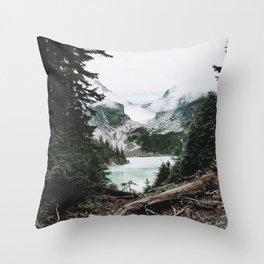 Into the Wild VI / Washington Throw Pillow