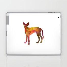 Ibizan Hound in watercolor Laptop & iPad Skin