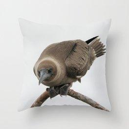Curious young boobie Throw Pillow