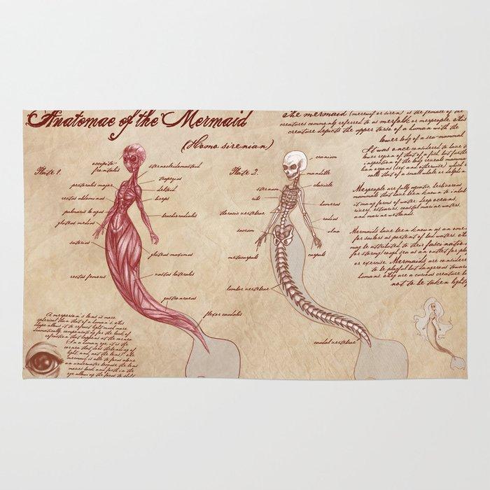 Anatomy of the Mermaid Rug by kazpalladino | Society6