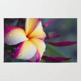 Hawaii Plumeria Flower Jewels Rug
