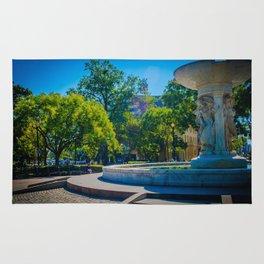 Fountain, Dupont Circle Rug