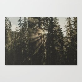Sunset in the Woods - Nature Photography Canvas Print