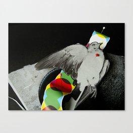 Dead dove Canvas Print