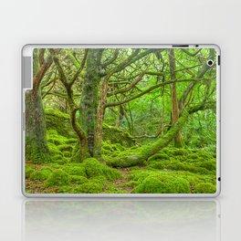 Emerald Forest Laptop & iPad Skin