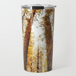 red woods forest in california Travel Mug