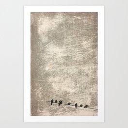 Doves, palomas Art Print