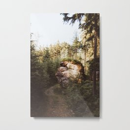 Forest trail - Landscape and Nature Photography Metal Print